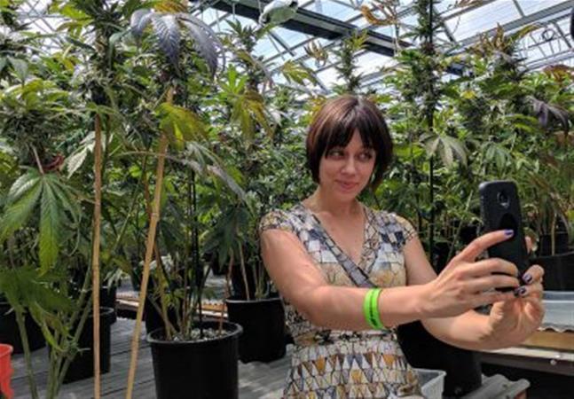 greenhouse-grow-tour-4-e1504209030941