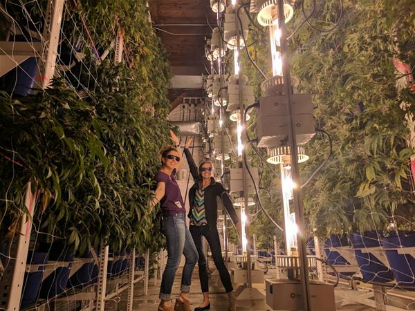 cannabis tourism 1