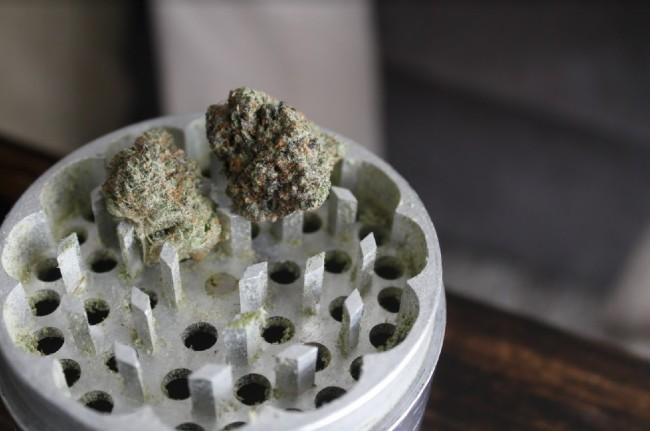 Weed in a grinder