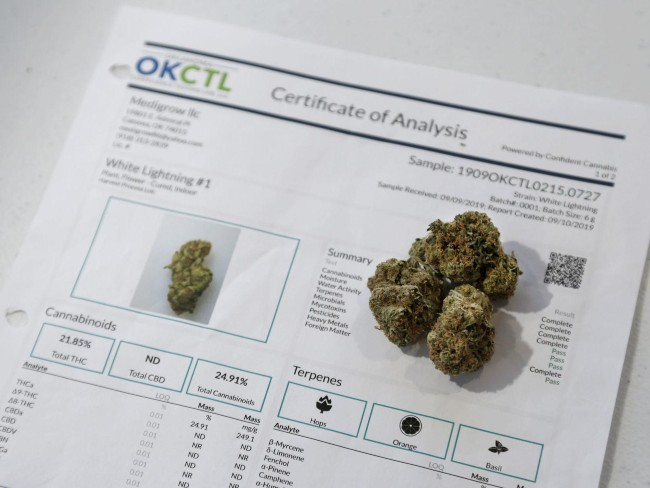 Cannabis and a certificate of analysis