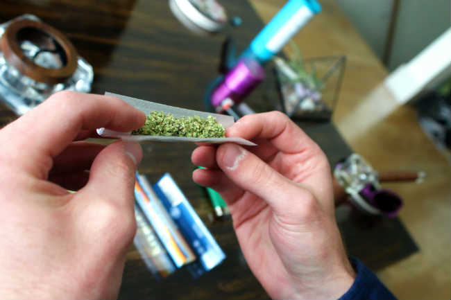 Is cannabis stronger than it used to be?