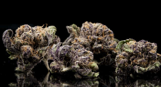 The Best Cannabis Strains To Combat Chemotherapy Side