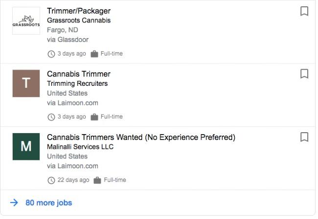 Cannabis Trimmer job listings