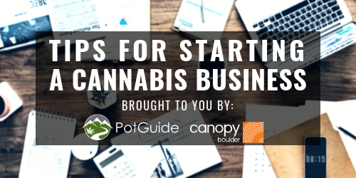 Tips For Starting a Canna-Biz