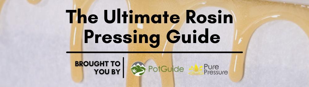 Ultimate Guide to Rosin Pressing