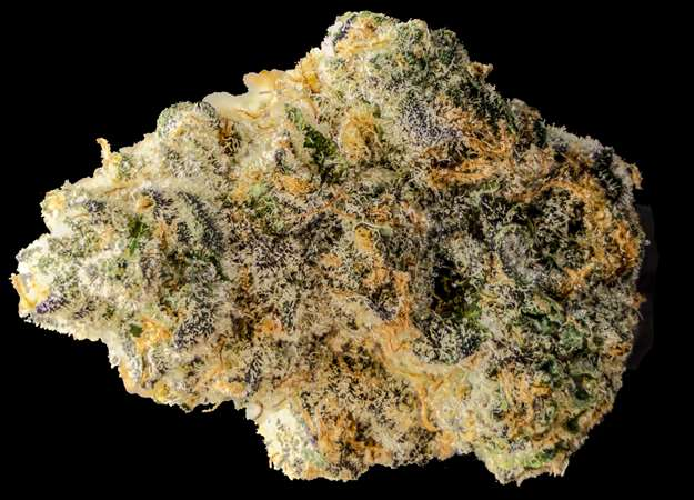 Girl Scout Cookies - Chong's Choice