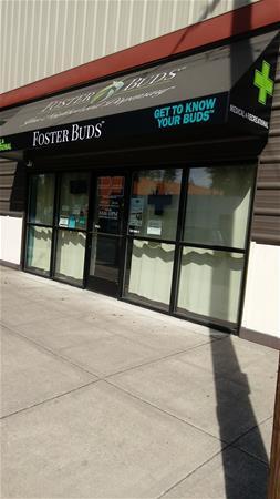 Foster Buds - Northeast