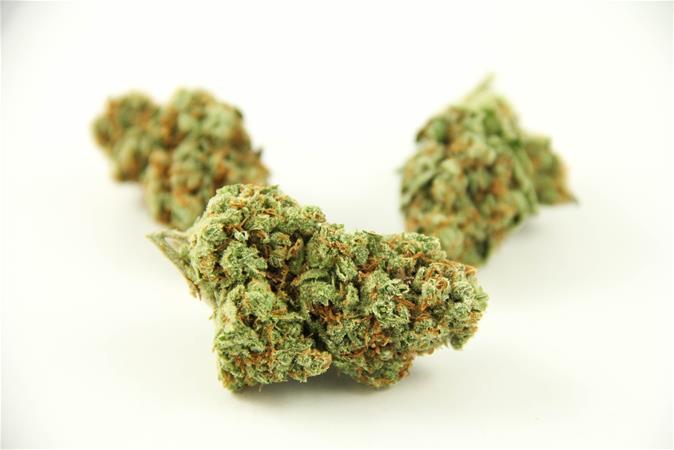 Silver Stem Fine Cannabis | Portland