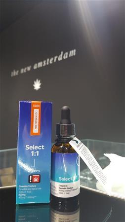 The New Amsterdam - Portland
