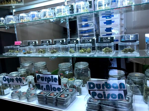 EcoCann Dispensary