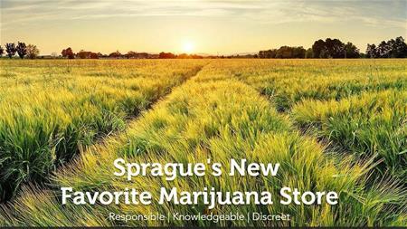 2020 Solutions - Sprague