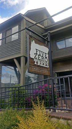 Five Zero Trees - Cannon Beach