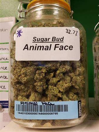 A Better Way Medicinal Alternatives
