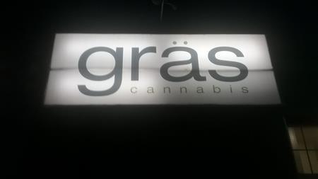 Gras Cannabis