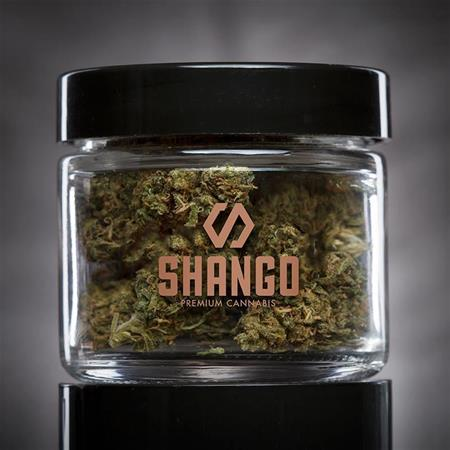 Shango - Harold