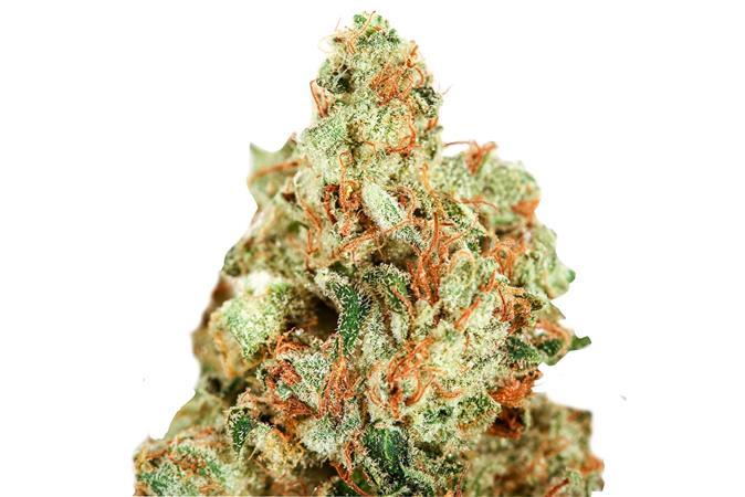 Brothers Cannabis Club