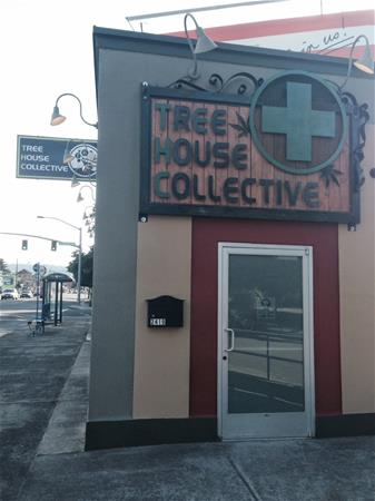 Tree House Collective