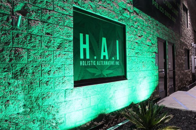 H.A.I - Holistic Alternative Inc