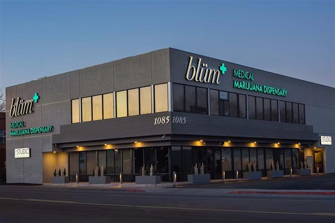Blüm - Reno