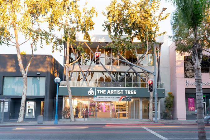 The Artist Tree