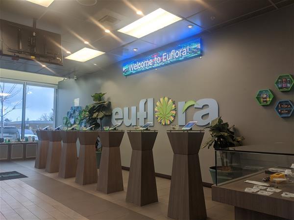 Euflora - Buckley