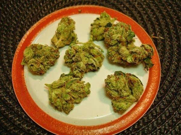 Greenfields Dispensary