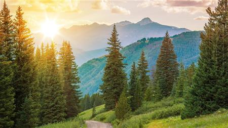 Verde Natural - Denver