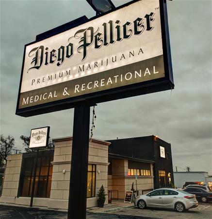 Diego Pellicer - Alameda