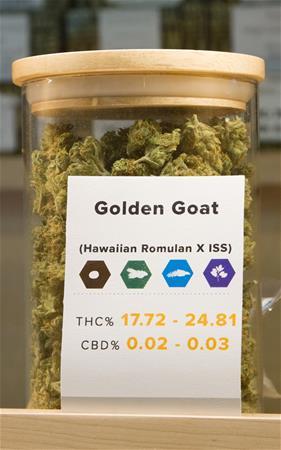 Ascend Cannabis Co - Denver