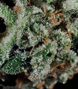 Marijuana Withdrawal Natural Remedies