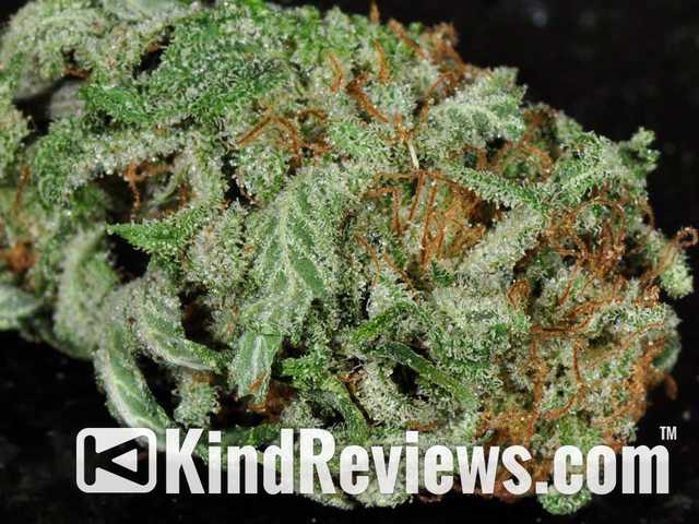 marijuana product reviews