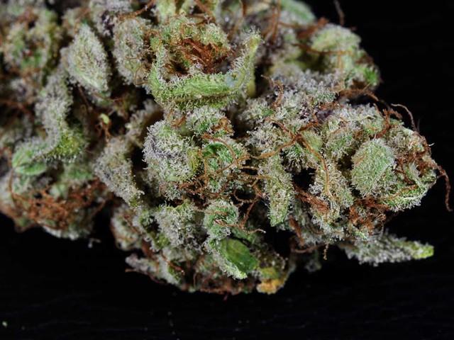Marijuana Strain Profiles   PotGuide com