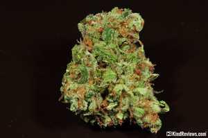 Pink Pez   Marijuana Strain Library   PotGuide com