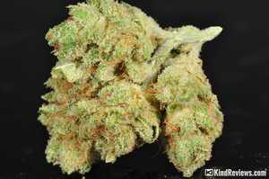 Gorilla Glue Review >> Gorilla Glue 4 Marijuana Strain Library Potguide Com