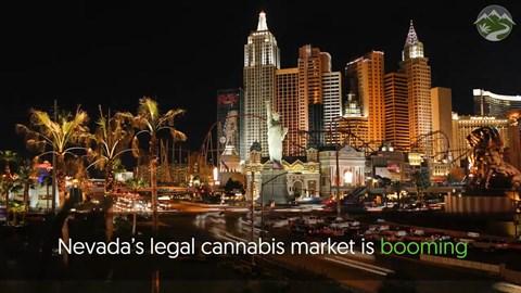 Nevada Recreational Marijuana Sales Update