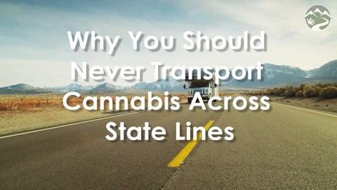 Why You Should Never Transport Cannabis Across State Lines